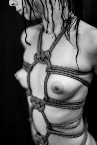 hishi harness with double coin knots